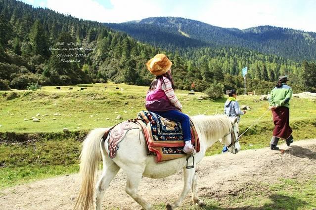 携母游!一遇西藏误终生,从此女生是天堂路人适合自行车的图片
