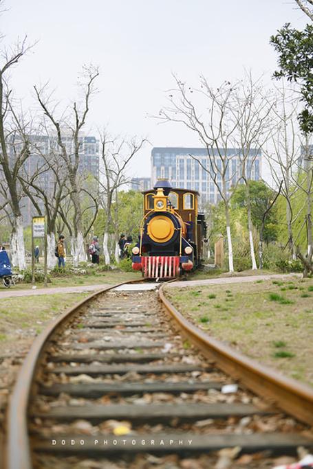 好童趣的小火车,上面坐满了春游的小盆友