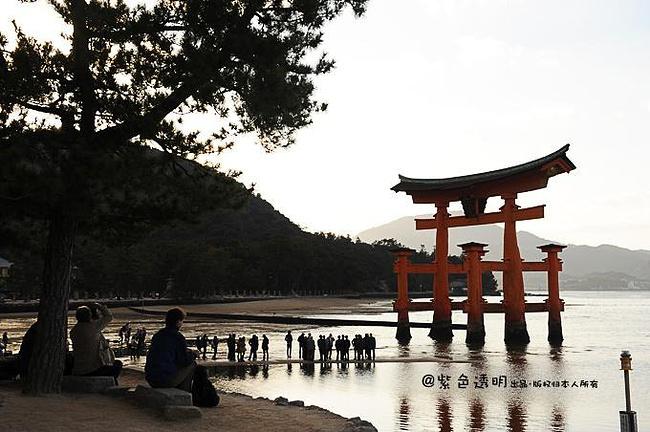 结构都被日本政府指定为国宝之外