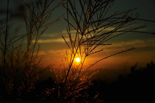 夕阳图片 夕阳图片唯美 夕阳图片 一个人背影 黄昏夕阳图片
