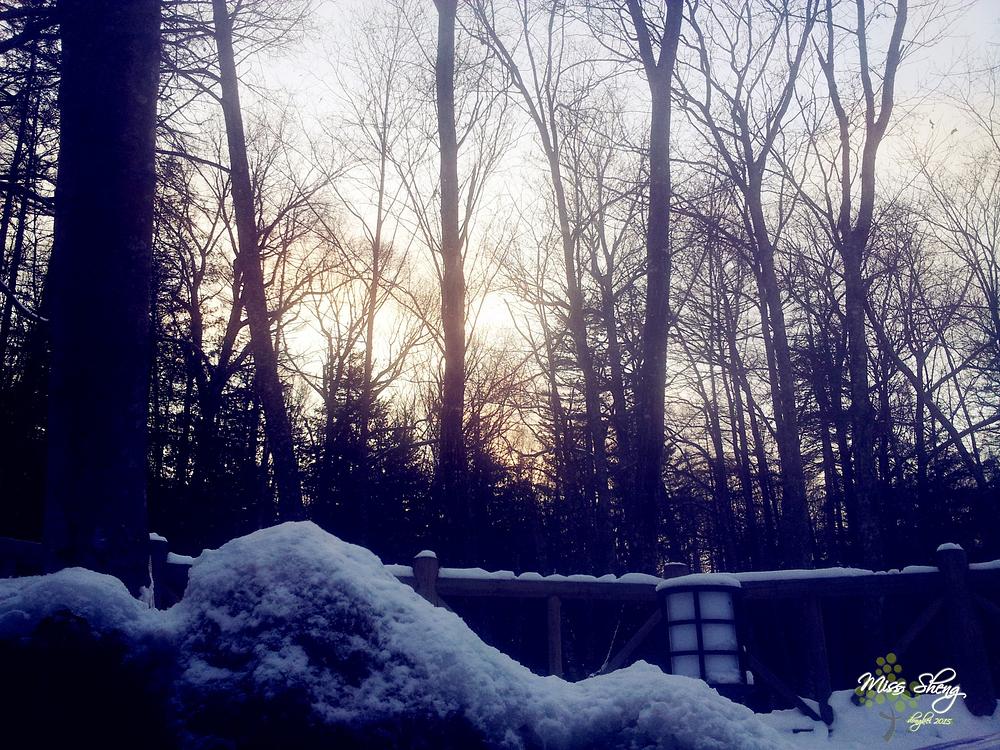 去北方看雪
