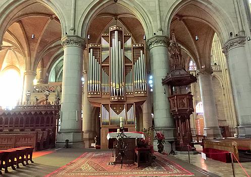 管风琴的造型令人联想起昆虫图片
