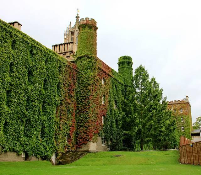 三一学院是亨利八世在16世纪建造的,所以在学院大门口的门檐上还有八世的塑像。有趣的是,国王右手中本该持有的权杖,却有一次被醉酒的学生爬上取下,插入了一根桌子角,而后来院方也未追究,就由他去了,到现在,还有多少人为此津津乐道。而三一学院还未入门,就有一个吸引眼球的去处,那就是大门旁边的一棵苹果树,那颗牛顿发现万有引力的苹果树。当然,小小的苹果树不可能生存那么长时间,这是一个移植过来的代替品,我们所需感受的,仅仅只是那种灵感改变世界的故事罢了。 牛津剑桥所有学院一年当中最盛大的活动,一般安排在每年的五月底或者