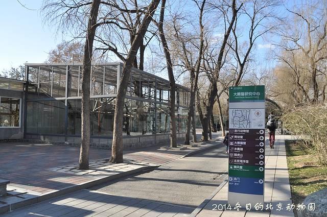 出门寻找北京的冬天--动物园游记