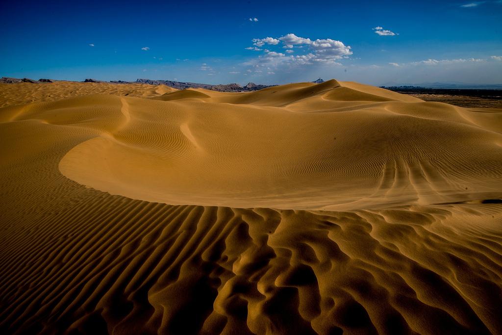 到内蒙古的西部,赴一场沙漠之约