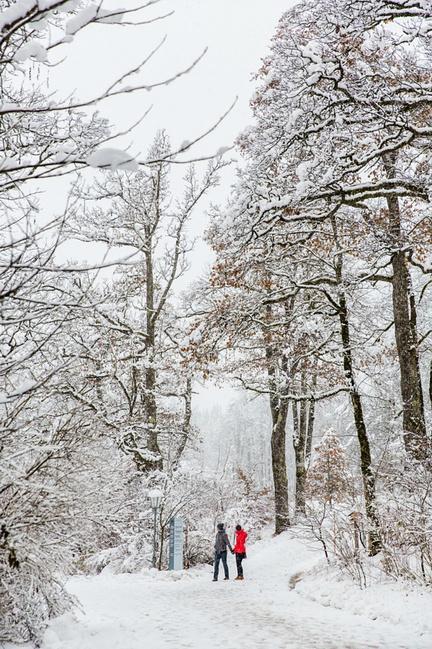 去看德国的冬天:欧洲奥地利_因斯布鲁克旅游武林攻略外传手游邪皇攻略图片