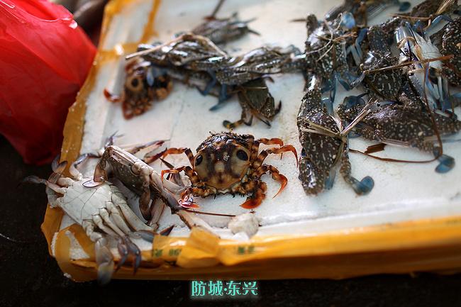 北海旅游攻略 涠洲岛幸福时光  最后,我和老婆买了4只大螃蟹48一斤,不