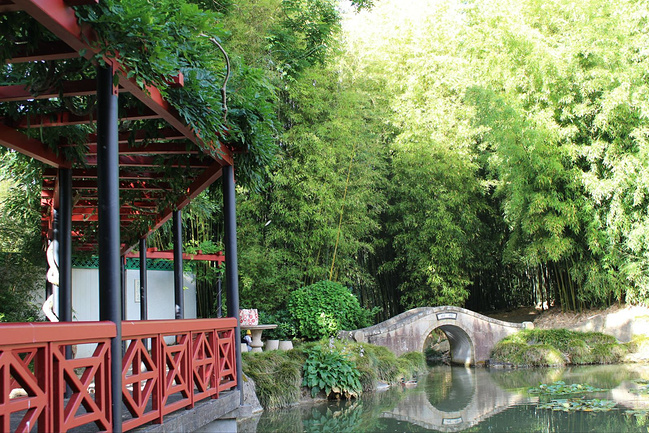 中式花园的廊桥和拱桥