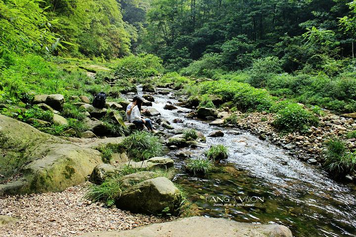 2019好山好水好風景,走在綠蔭林間,看小溪流淌,呼吸真