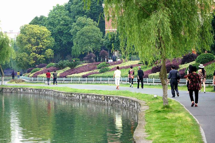 市中心宝塔湖公园风光