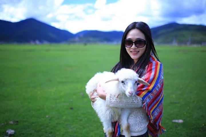 可爱的小羊羔,软绵绵的,抱着很舒服