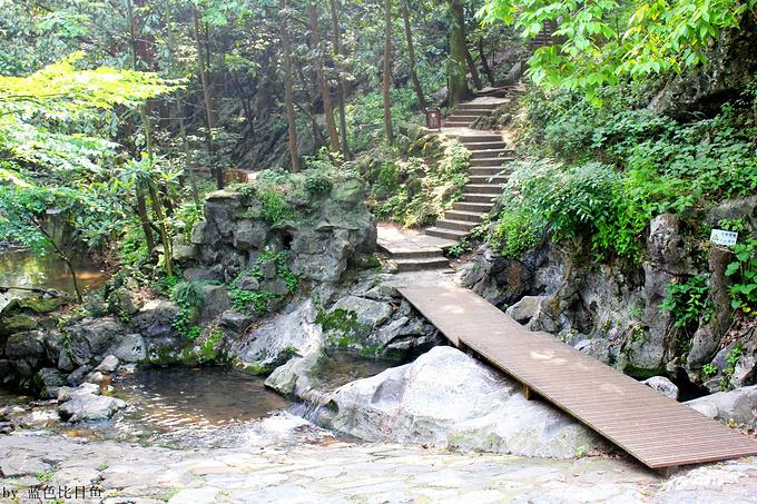 旅游攻略断桥烟树,攻略竹径小路杭州沿着宝宝往上是通往飞来峰夏日升级域风荷魔图片