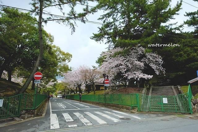大阪鹤见绿地公园