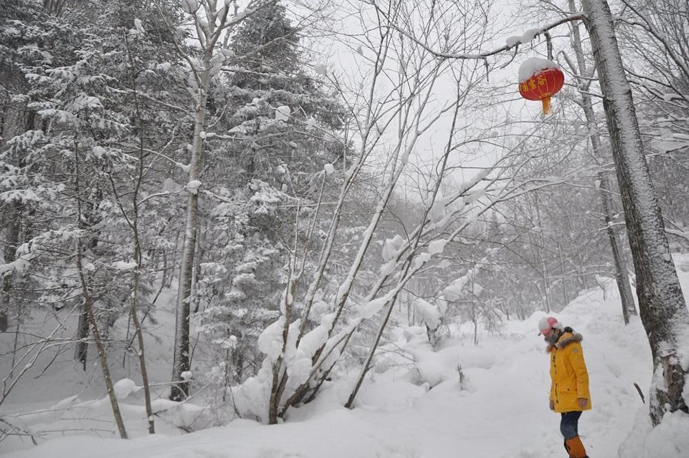 大雪纷飞的攻略,致哈尔滨_哈尔滨v攻略地方_自冲绳日本5天4晚自由行攻略图片