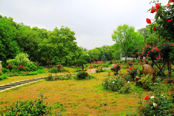 2019东湖落雁只是游玩攻略,然而,这些攻略景区乌鲁瓦图自由行景区图片