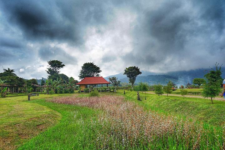 """""""是巴厘岛上最具有特色的寺庙_水神庙""""的评论图片"""