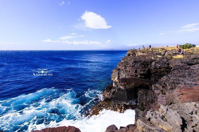 夏威夷——在浩瀚的太平洋看鲸鱼出没