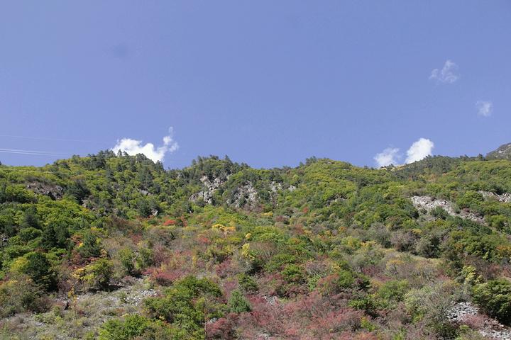 坐车上山沿途风景,刚见到那么一点红叶就开始很兴奋,沿途随拍!