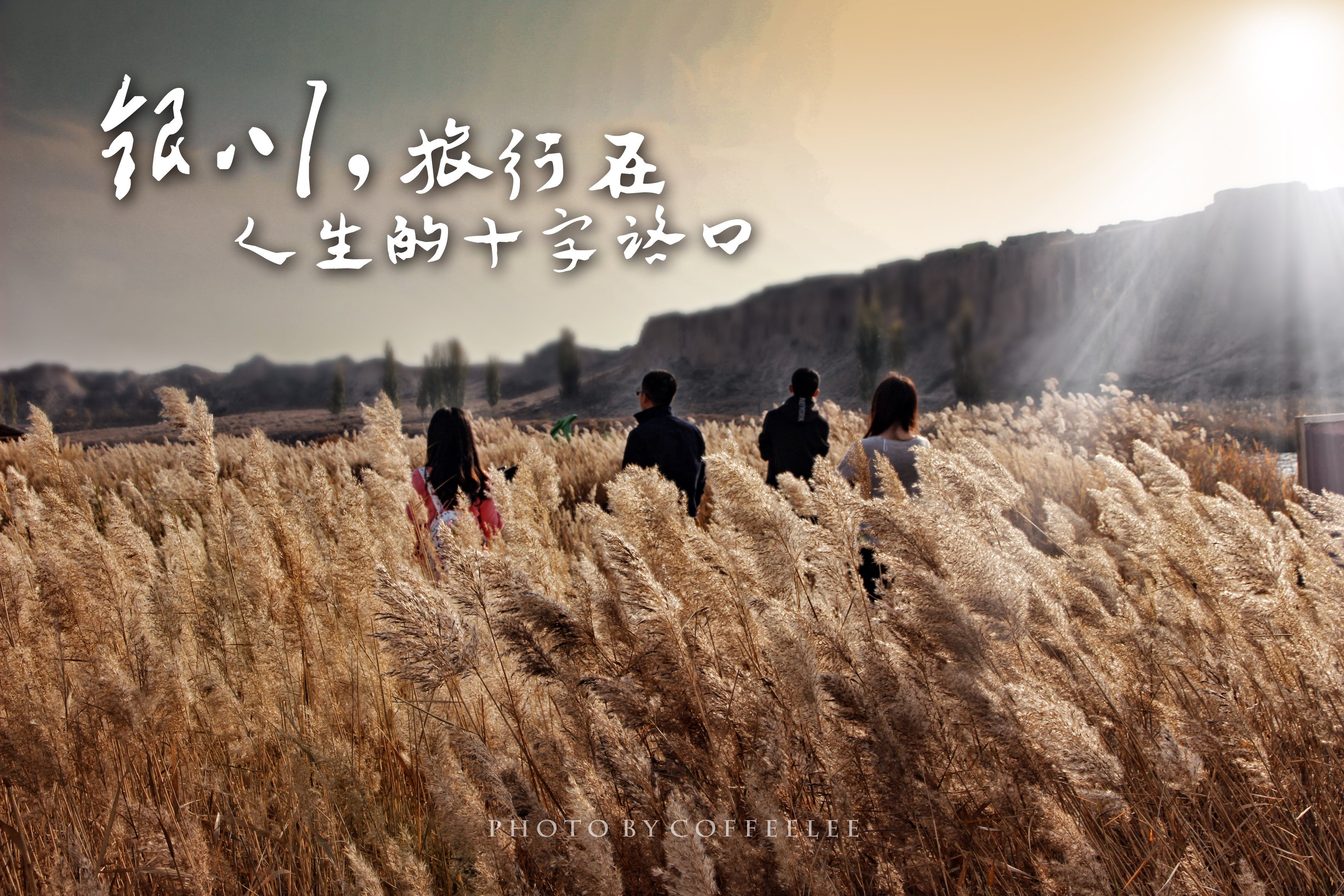 【小锋】银川,旅行在人生的十字路口