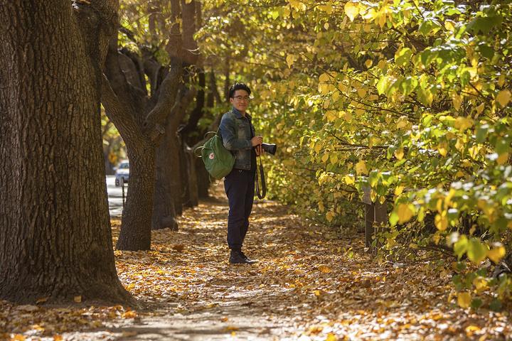 壁纸 风景 森林 桌面 720_480