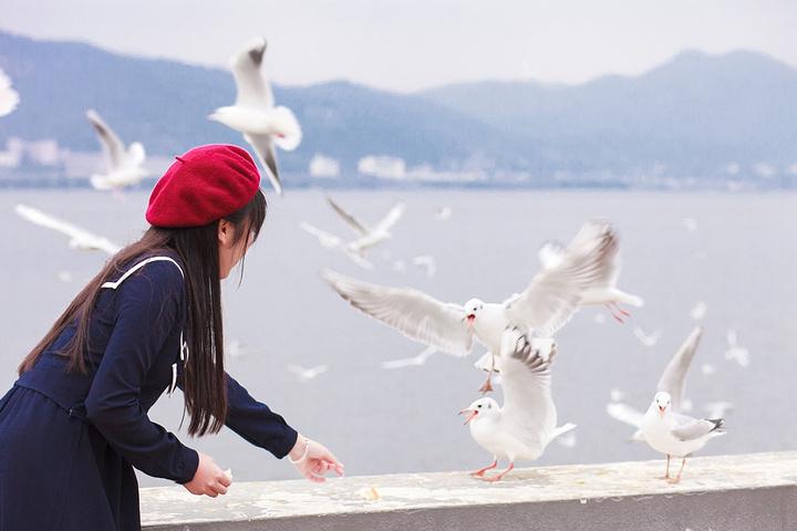 2017【关键词:作文天水海埂阴天大坝】._海描写美食昆明海鸥天水的图片
