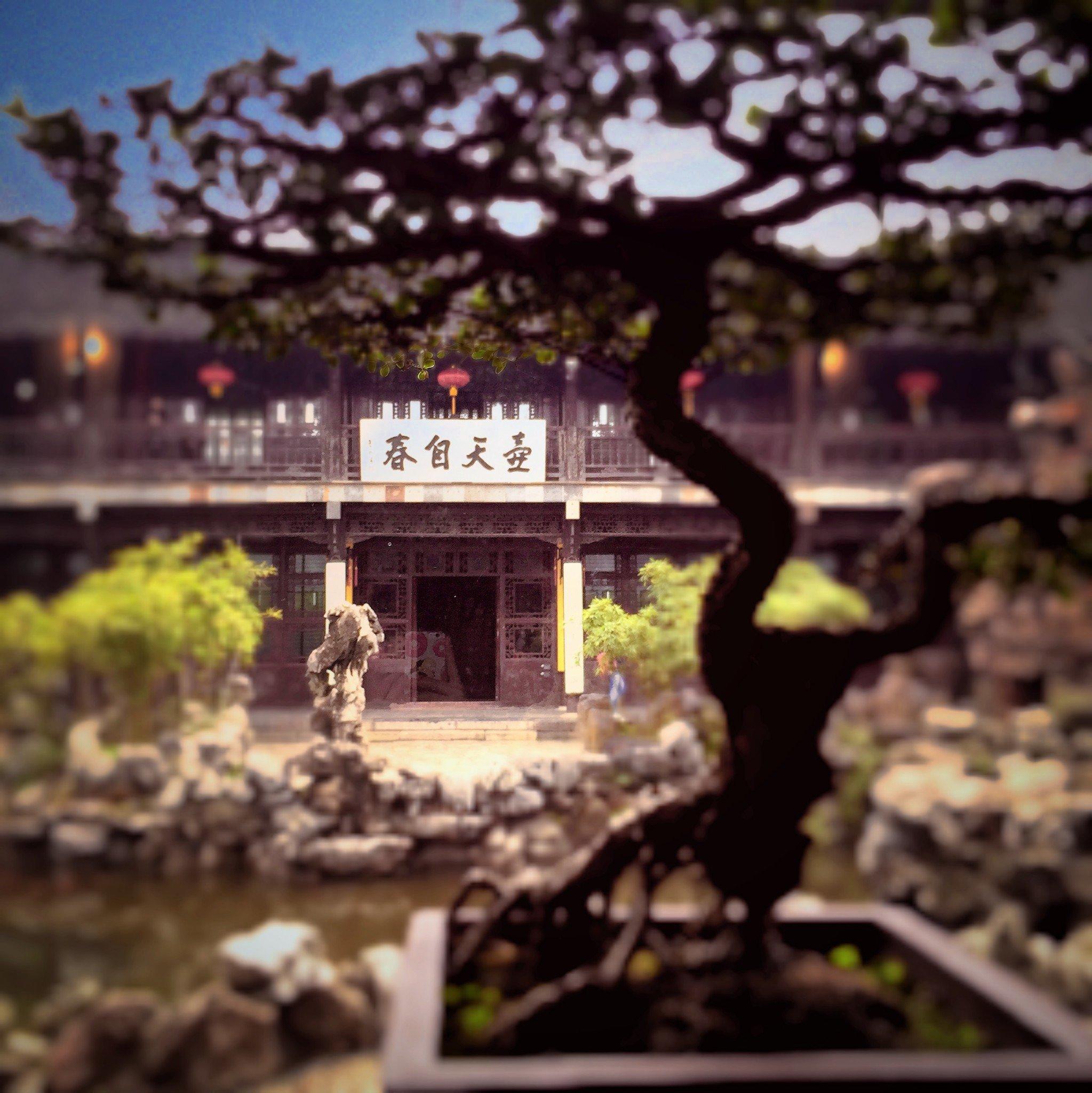 攻略三月下上海,饱览攻略_扬州v攻略自驾_自助黄山旅游烟花扬州美景图片