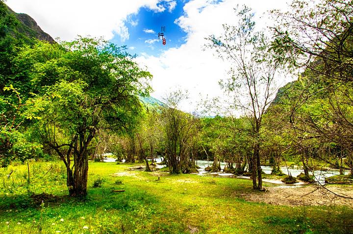一路走进去,会不断发现大自然的奇妙,许多美丽深藏在这片密林和湿地里