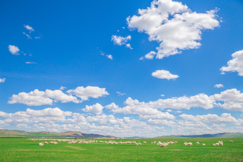 背景 壁纸 草原 风景 天空 桌面 3000_2000