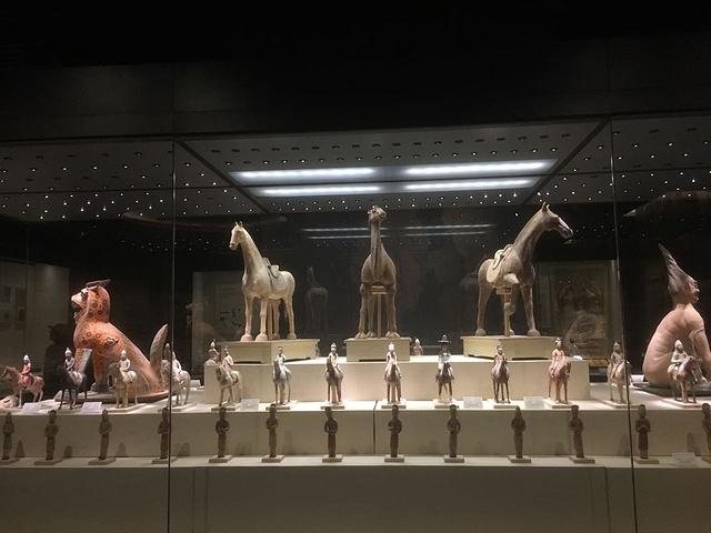 2017上午陈列了新疆博物馆。博物馆内参观了上海南京路街拍美女图片