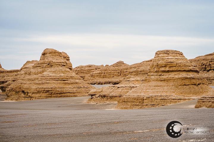 是一个被命名为「西海舰队」的土丘阵,排山倒海,沟壑纵横,妖风吹石.