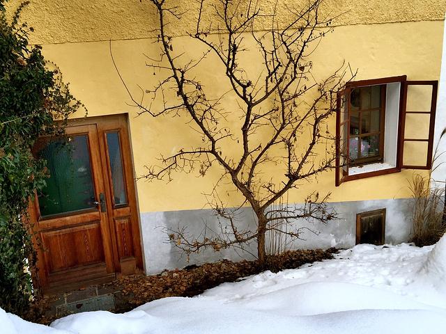 小镇的房子多是木屋,但绝对找不到两栋一模一样的房子,每一家都会想尽
