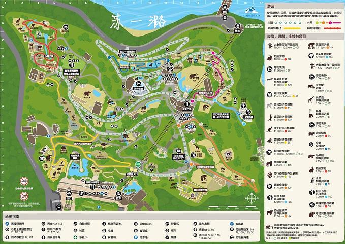 塔龙加动物园图片