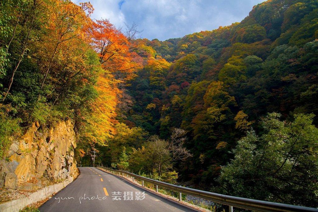 """【赏秋】盘点国内10个当季最美的旅行地,秋色正浓,一起去大自然劫个""""色"""""""