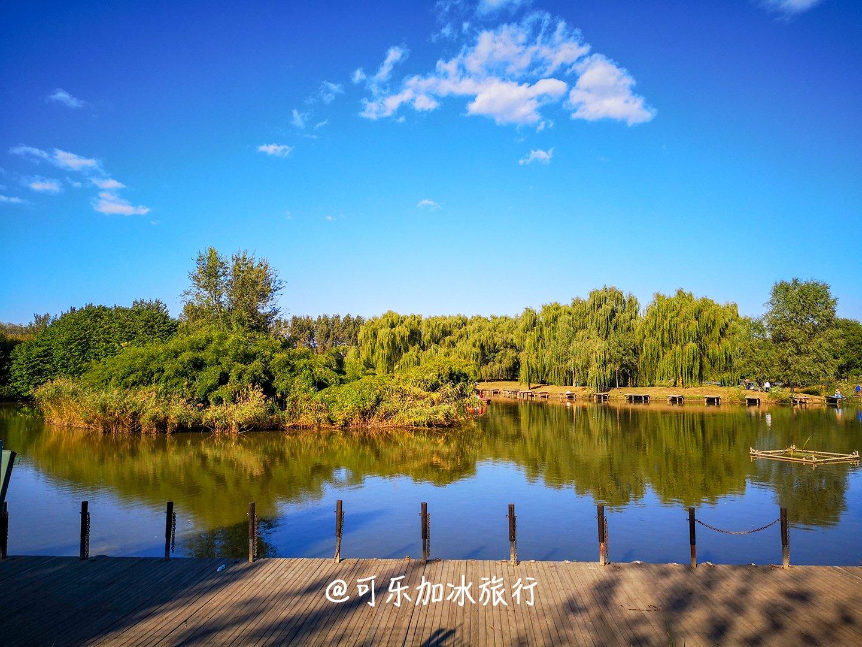 地大人少适合溜娃-汉石桥湿地公园怎么玩?