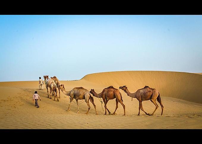大漠孤烟 ―― 穿行世界最小沙漠  【少年牵着手中地骆驼,飞速从沙丘