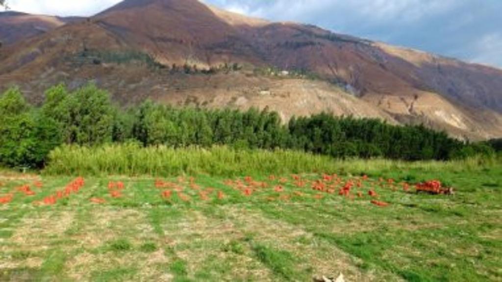 中国主要丘陵分布图_中国山脉主要分布图