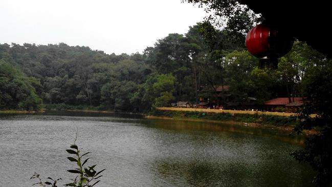 柳州市君武森林公园景区图片图片