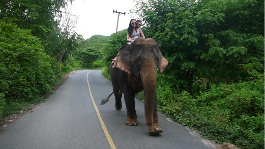人生若只如初见——童话泰国7日