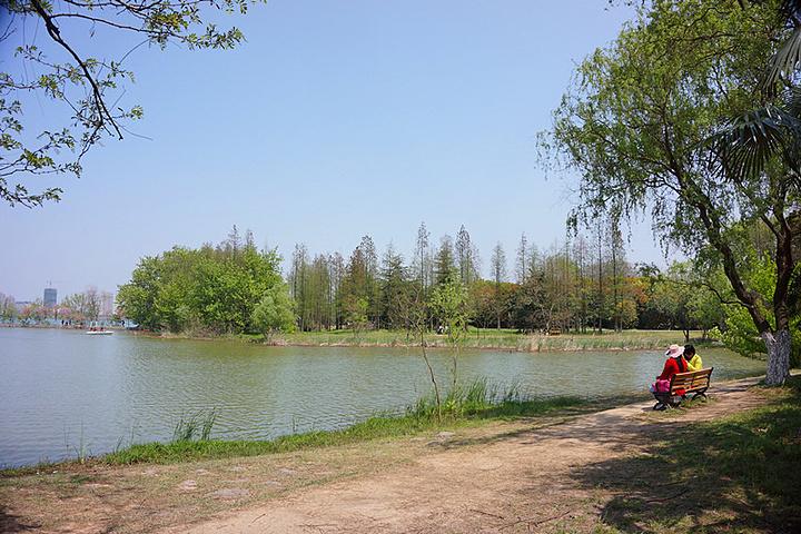 合肥植物园位于合肥蜀山风景区,是一个三面环水的半岛园区,公园