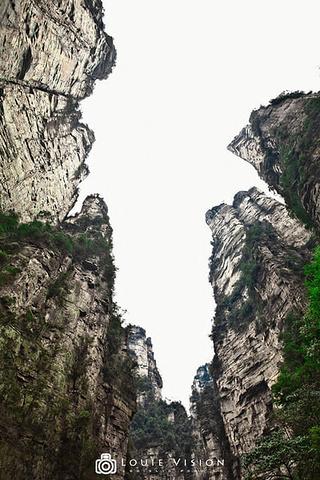 奇异的山峰 拍摄地点:张家界金鞭溪-2015天下第一桥是天然形成的图片