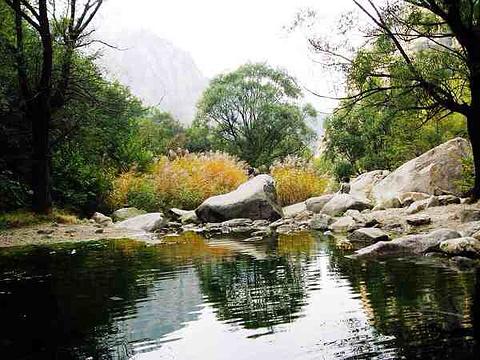 沂蒙山云蒙景区(蒙山国家森林公园)旅游景点攻略图