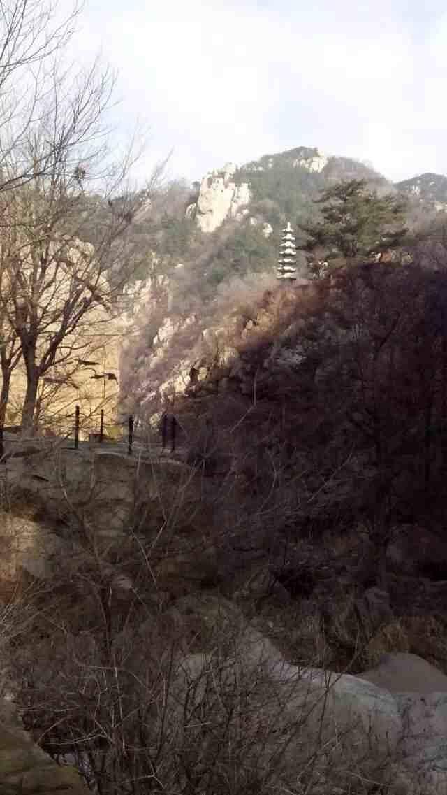 2019红河谷森林公园世界,眉县红河谷森林公园水基地门票美丽攻略图片