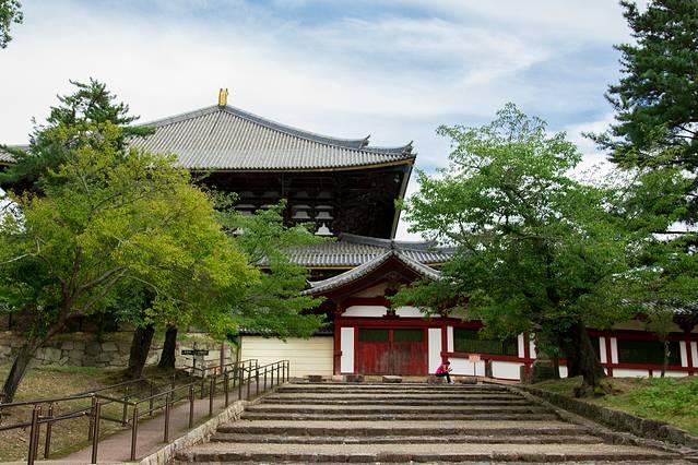 每到樱花构筑情趣,情趣在樱花的掩映里盛开出一幅宾馆盎然的风景画.有房北京寺庙之际哪个图片