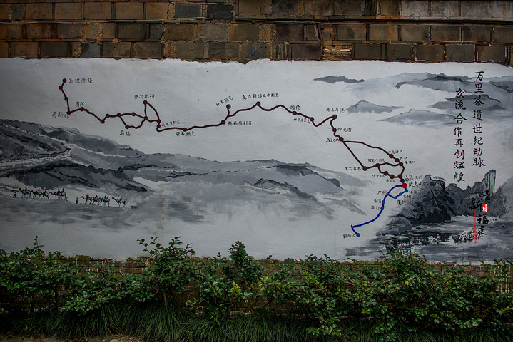 这里距离市区只有6公里,距离武夷山风景区也只有8公里,真正的是游走在