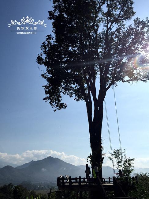 传说中的大树秋千~摄影器材一般+摄影技术一般