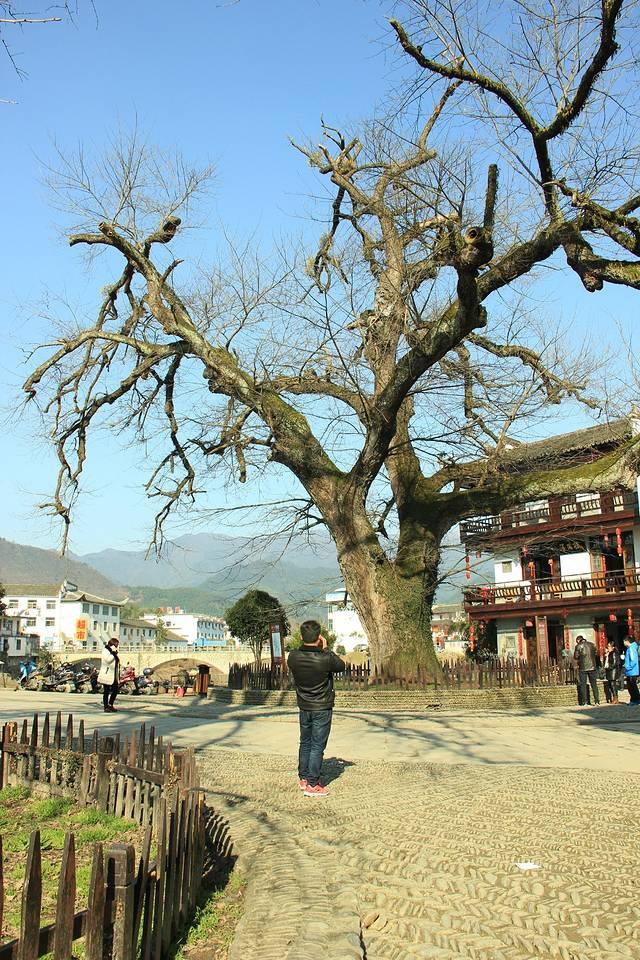 黄山到徐州周边攻略自驾游自驾v周边景区攻略呼伦贝尔图片