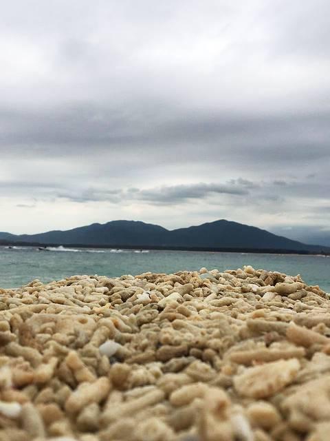 海边有很多死去的珊瑚.像小石子一样.