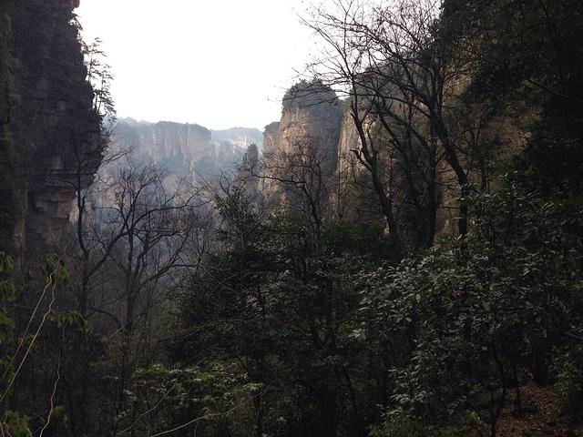"""张家界国家森林公园""""的评论图片"""