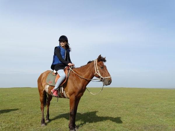壁纸 草原 动物 马 骑马 桌面 600_449