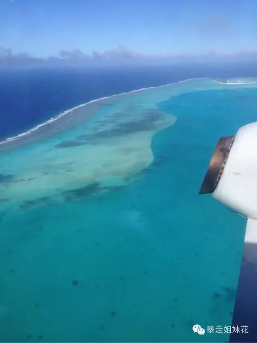 这里是最美海岛,这里海参任抓|库克群岛图片